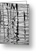 Water Greeting Cards - Reeds and Reflections No. 2 Greeting Card by Dave Gordon