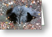 Fall Greeting Cards - Reflecting Autumn Greeting Card by Elijah Brook