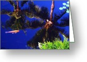 Hawaiian Pond Greeting Cards - Reflection in the Koi Pond Greeting Card by Ellen Henneke