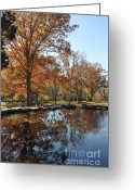 Cheekwood Gardens Greeting Cards - Reflection in the water Greeting Card by Denise Ellis