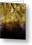 Backlight Greeting Cards - Reflection Greeting Card by Joana Kruse