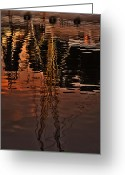 Florida Flowers Greeting Cards - Reflection Greeting Card by Mario Celzner