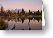Teton National Park Greeting Cards - Reflection Of Pine Trees In Lake Greeting Card by Gemma