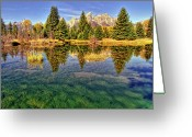 Teton National Park Greeting Cards - Reflection Of Trees Greeting Card by David Hensley