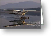 Plane Greeting Cards - Reflections of a Float Plane Greeting Card by Darcy Michaelchuk