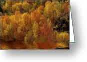Mood Mixed Media Greeting Cards - Reflections Of Autumn Greeting Card by Carol Cavalaris