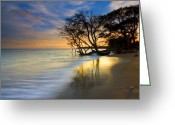 Waves Greeting Cards - Reflections of PAradise Greeting Card by Mike  Dawson