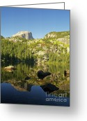 Water Bear Greeting Cards - Reflections on Bear Lake Greeting Card by Alex Cassels