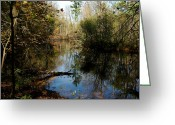 Fall River Scenes Greeting Cards - Reflective River Thoughts Greeting Card by LeeAnn McLaneGoetz McLaneGoetzStudioLLCcom