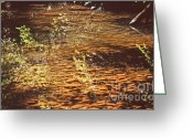 Riviere Greeting Cards - Reflets Sur La Riviere.aveyron Greeting Card by Migaud Stephane