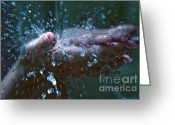 Lacquer Greeting Cards - Refreshing Splash Greeting Card by Jenny Rainbow