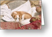 Hound Greeting Cards - Regal Beagle Greeting Card by Debra Jones