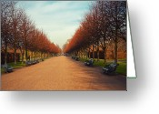 The Way Forward Greeting Cards - Regent Park Greeting Card by Erikacatanese©