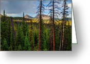 Mountain Landscape Greeting Cards - Reids Peak Greeting Card by Chad Dutson