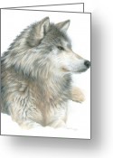 Wolves Drawings Greeting Cards - Relaxing Wolf Greeting Card by Carla Kurt