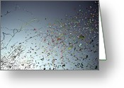 Nice Day Greeting Cards - Release Of Confetti Under Blue Sky Greeting Card by Jeren (France)