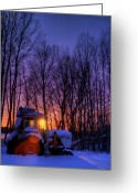 Winter Trees Greeting Cards - Reliable Mister Brown Greeting Card by Wayne Stadler