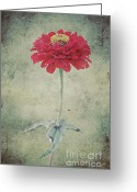 Garden Decoration Mixed Media Greeting Cards - Remeber me Greeting Card by Angela Doelling AD DESIGN Photo and PhotoArt