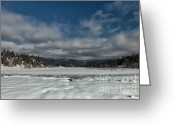 March Greeting Cards - Remnants of Seasons Past Greeting Card by Reflective Moments  Photography and Digital Art Images