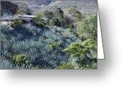 Arid Country Greeting Cards - Remote Landscape with Succulents Greeting Card by Jeremy Woodhouse