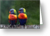 Colourful Greeting Cards - Rendezvous in the Rain Greeting Card by Lesley Smitheringale