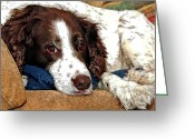 Jumping Greeting Cards - Rest Time For Bella Greeting Card by James Steele