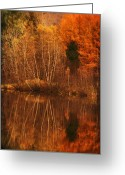 "\""aimelle Photography\\\"" Greeting Cards - Restes dAutomne Greeting Card by Aimelle"