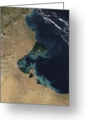 Arid Country Greeting Cards - Resuspended Sediment Off The Coast Greeting Card by Stocktrek Images