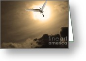 Migrating Bird Greeting Cards - Return To Eternity . Gold Cut Greeting Card by Wingsdomain Art and Photography