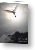 Migrating Bird Greeting Cards - Return To Eternity . Vertical Cut Greeting Card by Wingsdomain Art and Photography