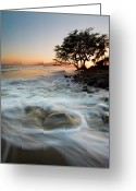; Maui Photo Greeting Cards - Return to the Sea Greeting Card by Mike  Dawson