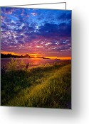 Natural Light Greeting Cards - Revival Greeting Card by Phil Koch