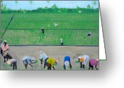 Nicole Jean-louis Greeting Cards - Rice Field Haiti 1980 Greeting Card by Nicole Jean-Louis