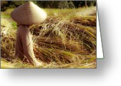 Triangle Greeting Cards - Rice Harvest Greeting Card by Nila Newsom
