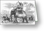 Elephant Ride Greeting Cards - Riding An Elephant Greeting Card by Granger