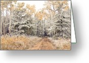 Dusty Road Greeting Cards - Right Place Right Time Greeting Card by James Steele
