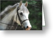 Dressage Photo Greeting Cards - Riley Greeting Card by Terry Kirkland Cook