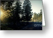 Dusty Road Greeting Cards - Rim Road Greeting Card by Julie Lueders 