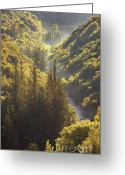 Forested Greeting Cards - Rindomo Gorge Greeting Card by Richard Garvey-Williams