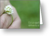 Holding Flower Greeting Cards - Ring flower Greeting Card by Mats Silvan