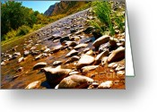 Rio Grande Greeting Cards - Rio Grande Above Santa Fe Greeting Card by Chuck Taylor