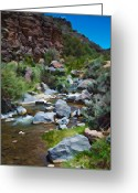 Photorealism Digital Art Greeting Cards - Rio Hondo arroyo  Greeting Card by Charles Muhle