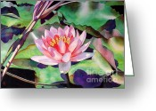 Waterlilies Greeting Cards - Rise And Shine Greeting Card by Robert Hooper