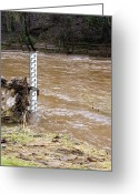River Flooding Greeting Cards - Rising River Level Greeting Card by Mark Williamson