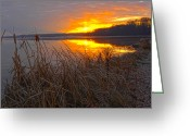 N Framed Prints Greeting Cards - Rising Sunlights Up Shore Line Of Cattails Greeting Card by Randall Branham