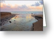 Williams Greeting Cards - River and Sunrise- St Lucia Greeting Card by Chester Williams