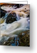 Troy Greeting Cards - River Dance Greeting Card by Neil Shapiro