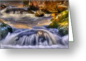 Yellow Trees Greeting Cards - River Flows  Greeting Card by Svetlana Sewell