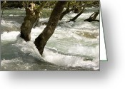 River Flooding Greeting Cards - River Manavgat In Flood Greeting Card by Bob Gibbons