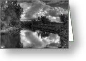 White Wolf Greeting Cards - River of Dreams Greeting Card by Thomas Young